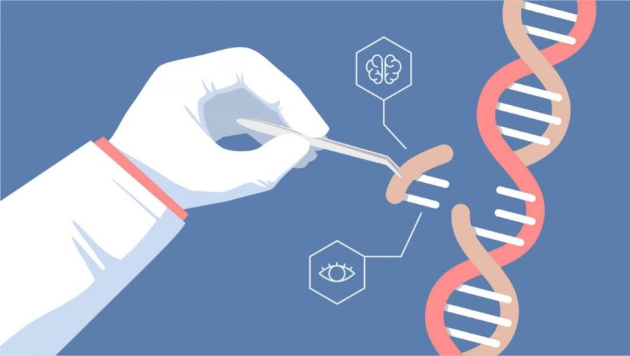 CRISPR%3A+The+Tool+that+Can+Transform+Medicine+and+Humanity